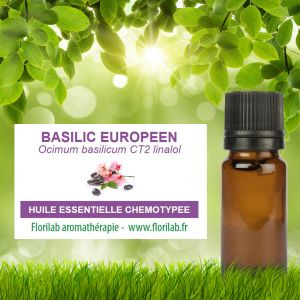 Huile essentielle de BASILIC EUROPEEN